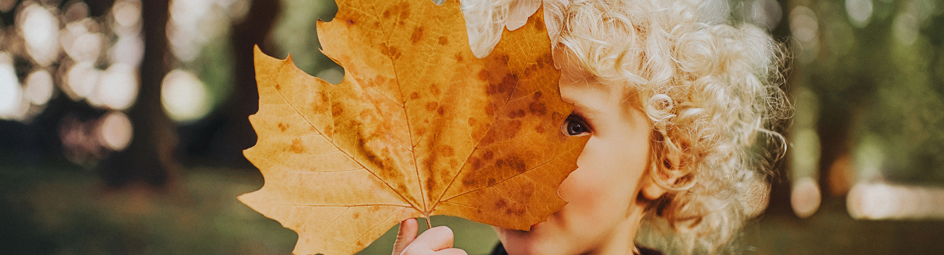 child holding autumn leaf
